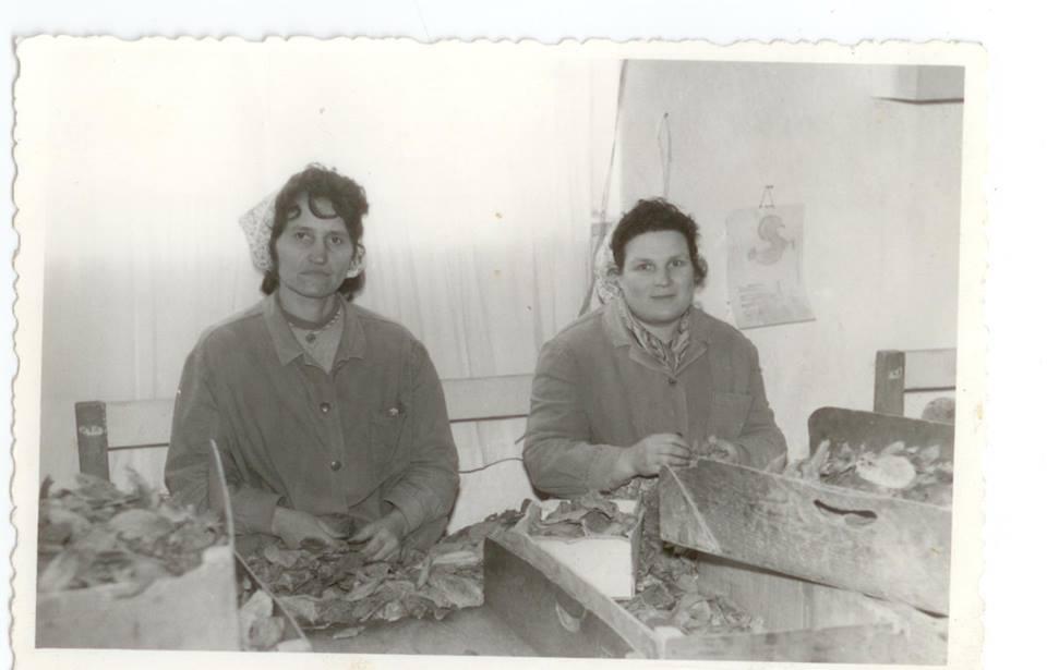 1968 г., Милушка Димитрова (в ляво),Архив: Стойчо Тосков