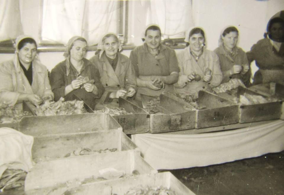 Христина /Титка/ Алагьозова (втората от ляво на дясно), края на 50-те г. Архив: Атанас Кендев