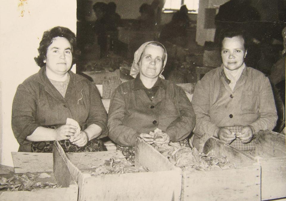 Христина /Титка/ Алагьозова (в средата), края на 50-те г.. Архив: Атанас Кендев